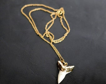 24k Dipped Sharks Tooth Pendant & Chain