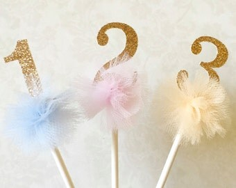 Custom Number PomPom Cupcake Toppers, Set of 6 - Number Toppers, Custom Cupcake Toppers, Cute Birthday Topper, Cupcake Toppers
