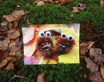 Postcard Eyes see you in autumn