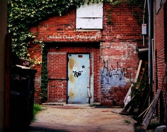 Alleyway Picture Print