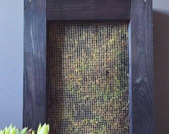 Vertical succulent garden / succulent plants / wood planter / cactus plants / vertical garden / succulent care / indoor flower pots / cacti