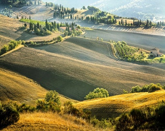 Tuscany Landscape Photo, Pienza Walk,  Cypress Trees, Rolling Hills, Winding Road, Tuscan Wall Decor, Fine Art Photo, Early Light