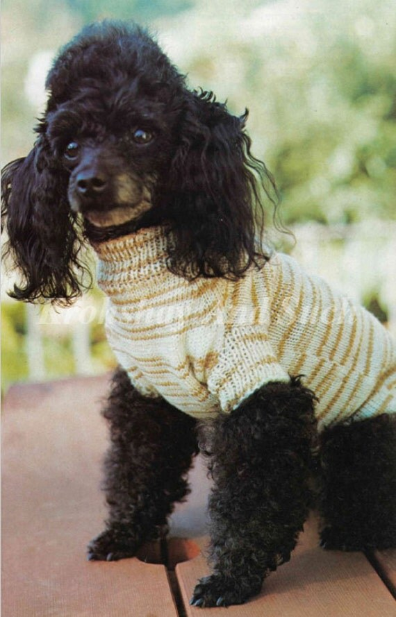 Download Knitting Patterns For Dogs : Knitted Small Dog Coat Knit Pattern PDF Instant Download.