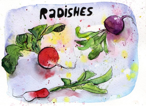 Radishes - Pen and Watercolour Painting