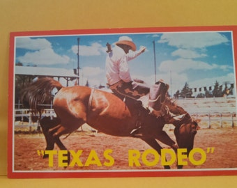 Texas Rodeo vintage postcard