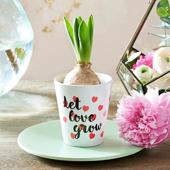 Let Love Grow Plant Pot, Romantic Plant Pot, Valentines Plant Pot, New Home Plant Gift