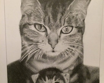 Mom cat and Kitty Drawing