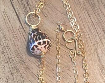 hawaiian cone shell necklace
