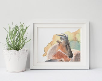 Goat print, watercolor print of goat, GS210DL, downloadable print of goat, digital print goat, printable goat art