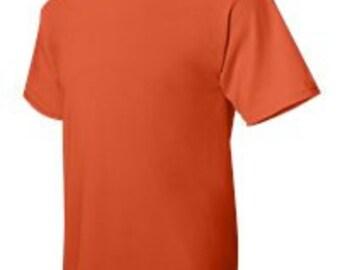 Hanes 5170 Ecosmart Tagless 50/50 T-shirt Blank
