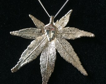 "Large Sterling Silver Japanese Maple Leaf Necklace, Real Leaf ""dipped"" in Sterling Silver with 20 inch Sterling Silver Chain, Free Shipping"