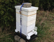 HONEY BEE Hive Ant Platforms How To Do, Great Gift Sale, Digital File Download TXT Now. Get Rid of Ants in Hive !  Your Bees Will Love You !