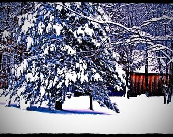 Country Winter