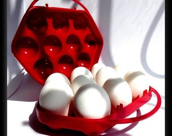 tray of eggs, plastic tray, red tray, vintage tray eggs, Soviet tray, made in the USSR, 1970s, 10 eggs,