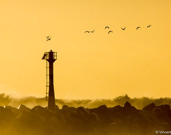 The flight. Color photograph of the sunset over Anglet. Fine art photography