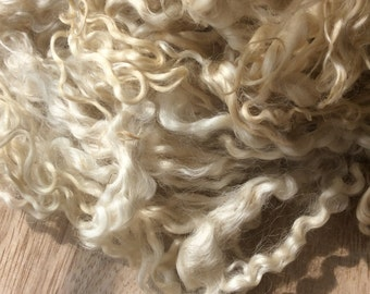 Cream Curly Wool Locks Roving/Tops for Felting, Dyeing, Spinning and Crafts