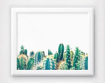 Cactus Print, Cactus Photograph, Botanical Print, Cactus Wall Decor, Cactus Printable, Southwest Printable, Southwestern Decor, Cactus Art