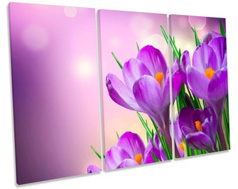 Crocus Spring Flowers Floral Purple Treble CANVAS WALL ART Box Framed Print