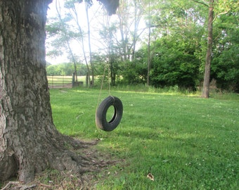 The old tire swing