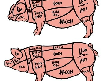 80% Off Sale Cut of meat set. Hand drawn pig isolated. Drawing Vector illustration. Pork cuts diagram. Butcher shop. (EPS, JPG)