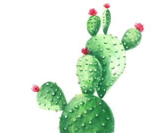 Cactus watercolor print, Cactus watercolor painting, Cactus art print, Cactus art painting, Cactus art, Cactus painting, Succulent art print