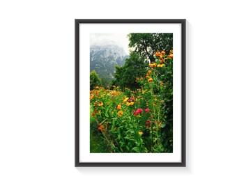 Alpine Garden A4 Art Photo Print Framed