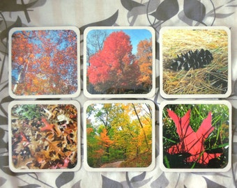autumn (fall) photo coasters or wall decor (set of 6)