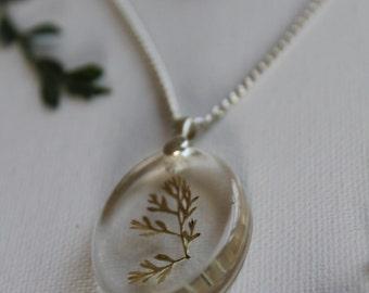 Terrarium resin pendant with forest jasper choker