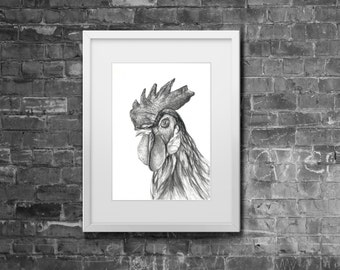 Original A4 'Mr Rooster' Bird Pencil Charcoal Drawing
