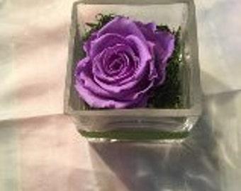 Lilac Preserved Rose arrangement