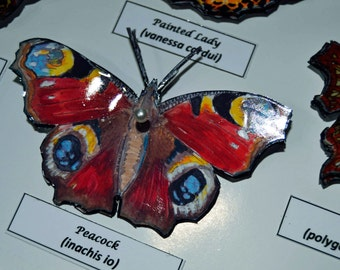 3D British Butterflies and Moths - in accurate in decoupage