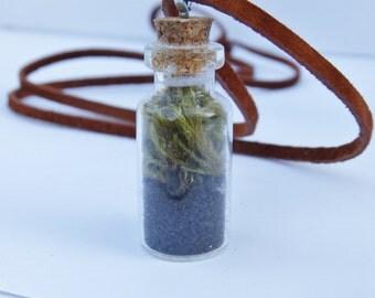 Moss Terrarium Necklace