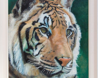 Portrait of a Tiger (oils, 2016)
