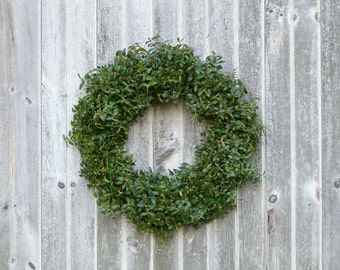 "Fresh  Boxwood Wreath, 18"" Wreath, Fresh Christmas Wreath, Front Door Wreath, Holiday Decor, Natural Boxwood Wreath, Real Boxwood Wreath"