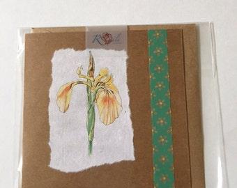 Handmade Yellow Iris blank greetings blank card.