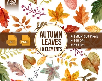 Digital Fall Leaf Clipart Vector - Watercolor Autumn Leaves Illustration - Hand Drawn Leaf Clip Art - Thanksgiving - October