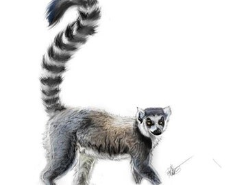 Ring-Tailed Lemur-Print