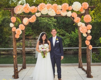Mexican Paper Flowers Tissue Fiesta Pom Poms -  Set of 20 - Wedding Arch Photo Wall