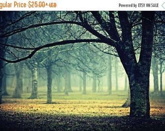 Summer Sale - Extend - Foggy Landscape, Mist and Tree, Fairytale, Enchanted Forest