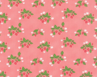 SALE - Gooseberry - Gooseberry Patch in Petal Pink: sku 5011-12 cotton quilting fabric by Lella Boutique for Moda Fabrics - 1 yard