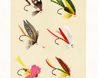 fly fishing print from an 1892 book, printable digital download no. 933