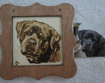 Pet Portrait Original Hand Burned Arft Portrait with Frame Made to Order by Shannon Ivins Rottweiler