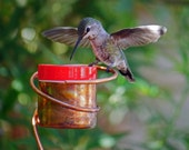 Flower Pot Stake Bee-proof Copper Hummingbird Feeder