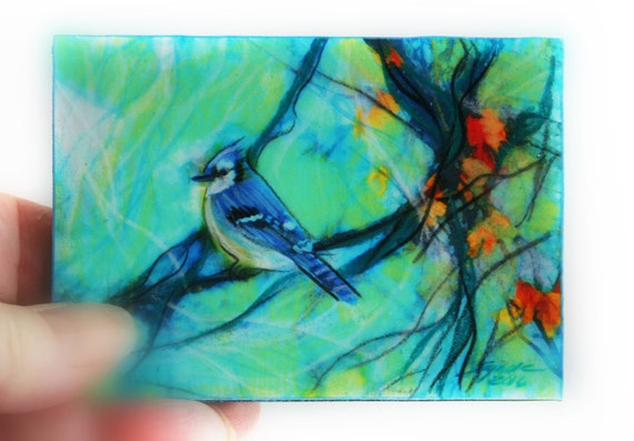 spring jay mounted aceo original bird art. Black Bedroom Furniture Sets. Home Design Ideas