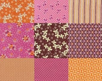 Denyse Schmidt's Hope Valley fabric- Fiesta Colorway- 9
