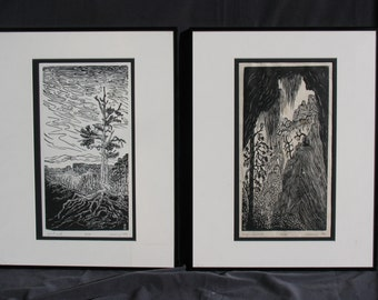 FRAMED Southwest Landscapes Matched Set 2 National Park Woodcut Prints Bryce and Zion Views