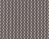 Sundrops (29016 25) Dotted Dark Taupe by Corey Yoder