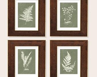 Fern Prints, Botanical Prints, Watercolor Ferns, Set of 4, Wall Decor, Living Room Art