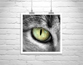 Cat Eye, Animal Photograph, Cat Picture, Pet Photography, Cat Print, Chat, Kitty, Cute Animals, Square Print, Square Art