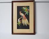 Mexican Feather Art Bird Art Vintage wAll Decor Bird of Paradise Framed Wall Art 1960s Art
